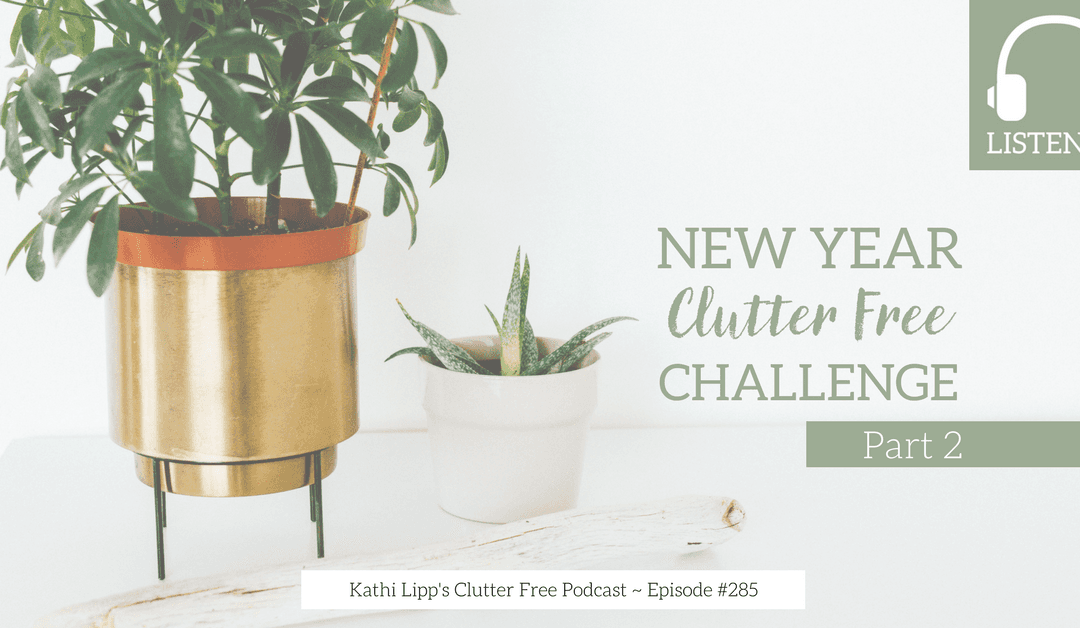 Podcast Eps: #285: New Year Clutter Free Challenge, Part 2