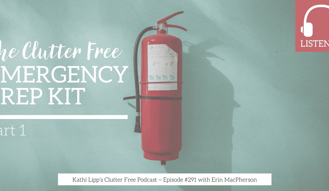 Eps #291: The Clutter Free Emergency Prep Kit – Part 1