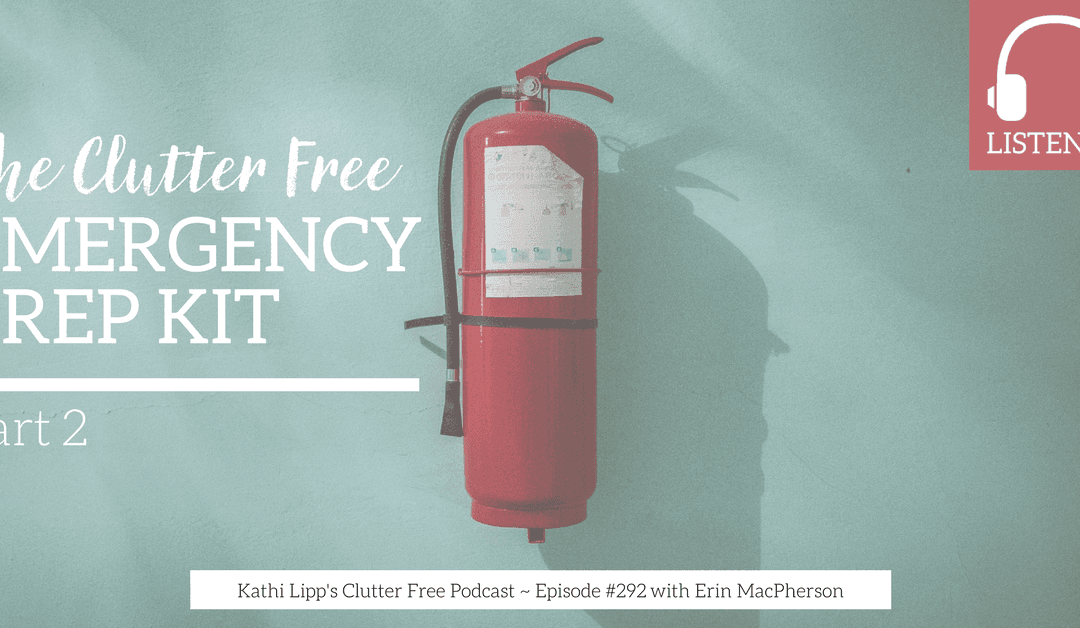 Eps: #292 The Clutter Free Emergency Prep Kit Part 2