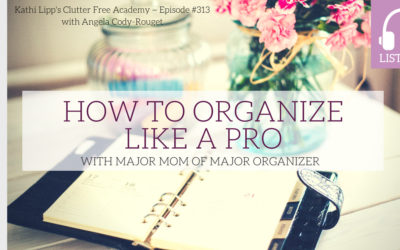 Eps. #313: How to Organize Like a Pro with Major Mom of Major Organizer