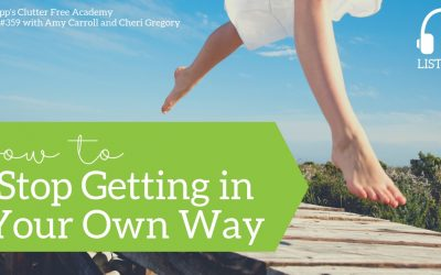 #359 How to Stop Getting in Your Own Way with Amy Carroll and Cheri Gregory