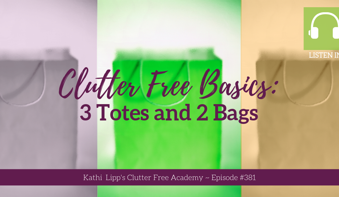 #381: Clutter Free Basics: 3 Totes and 2 Bags