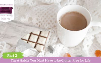 441 The 6 Habits You Must Have to be Clutter Free for Life Part 2