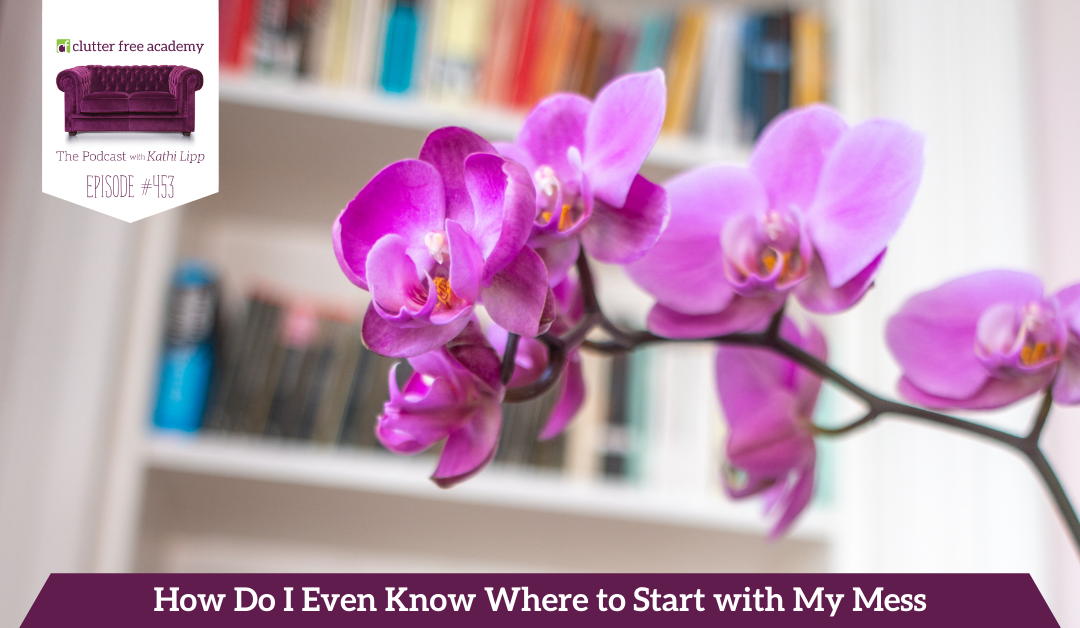453 How Do I Even Know Where to Start with My Mess – Questions with Kathi and Kelly
