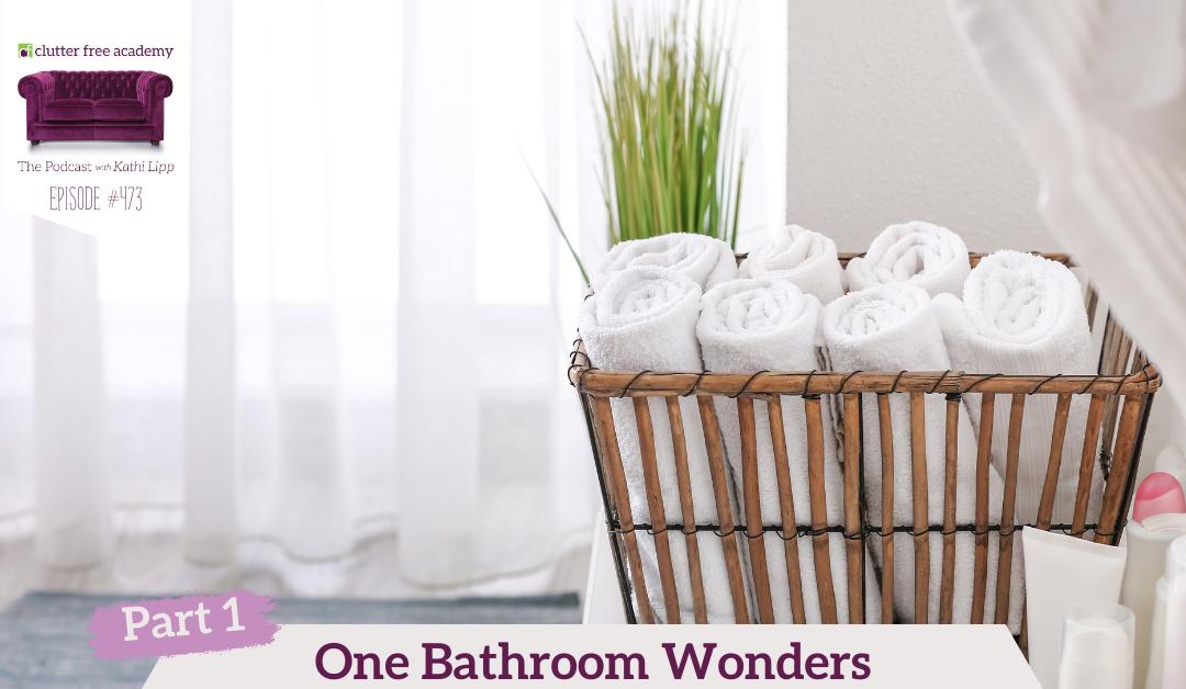 474 One Bathroom Wonders with Tonya Kubo Part 2