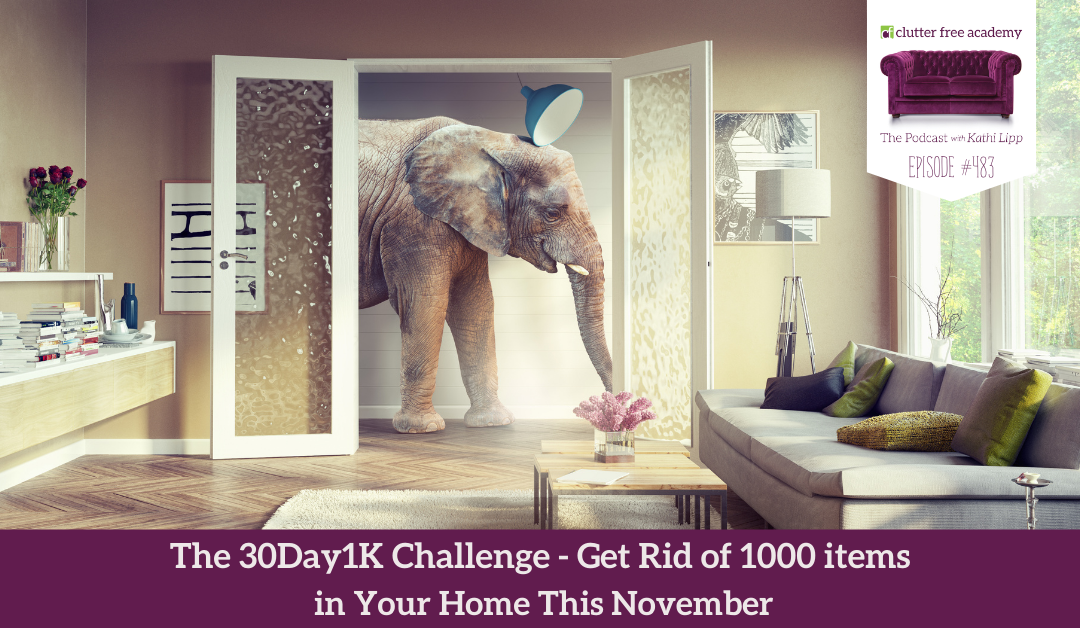 483 The 30 Day 1K Challenge Getting Rid of 1000 Items in Your Home This November
